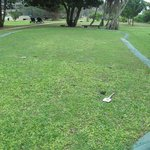 espace golf