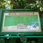 Map of Yaeyama-yashi forest