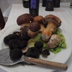 Primizie ,tartufi , ovoli e porcini