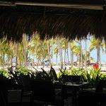 View from beach buffet