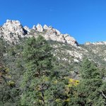 Organ Mountain overview