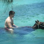 Gliding through the aquamarine water on the back of a horse