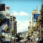 A postcard perfect day in Hollywood by the Pantages Theatre and The W Hotel.