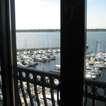 View of marina--window wall opens to fresh air!