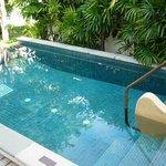 pvt plunge pool