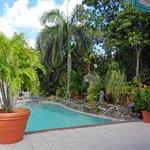 Upper pool deck
