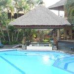 la piscine et son bar