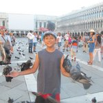 Pigeons in St Marks Square