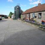Farmyard & Annexe rooms