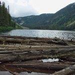 Falls Lake Foto