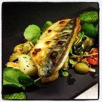 Douglas bay mackerel on potato and olive salad