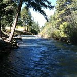 The beautiful river full of HUGE fish!