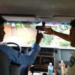 Chauffeur et guide témoignent de leur vote