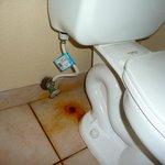 Propreté douteuse dans la salle de bain