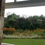 Schöner, gepflegter Garten
