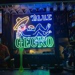The Blue Gecko - Amazing!