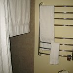 Spa shower and heated tower bar
