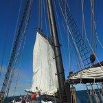 sail coming down