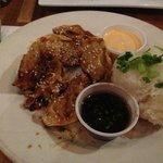 Vegetable fried dumplings and rice