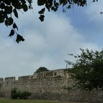 The medieval town wall