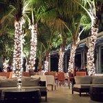 Stelle restaurant at night