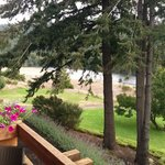 The Rogue River from our balcony
