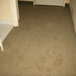 Filthy carpet at entryway