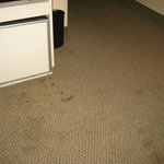 Filthy carpet in sitting area