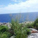 1 of the Ocean Views on Cayman Brac