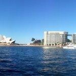 Sydney Harbour from Circular Quay