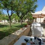 breakfast - garden terrace