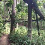Hartshorne Woods Park