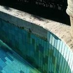 grimy swimming pool