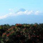 view on Merapi volcano from restaurant balcony
