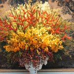 BEAUTIFUL AND EXOTIC FLORAL ARRANGEMENTS - VERY WELCOMING!