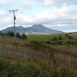 view from backyard- Croagh Patrick