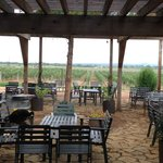 The Patio and Vineyard