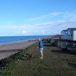 fantastic seafront walks for your dog