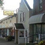 Manlius Art Cinema