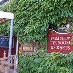 sizergh barn & farmshop