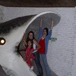 Saida do aquário