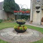 Beautiful well cared for gardens and driveways