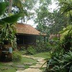 rumah widayanto