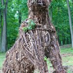 This sleeping giant is gone.  This guy is now the sentry of the forest!  7/2013
