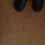 Filthy carpet