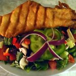 Fish & Toss Salad