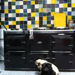Les gardiens de la cuisine