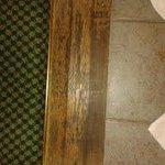 Rotting Saddleboard