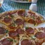 pepperoni pizza, lasagne and fries. -delicious