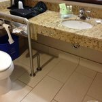 handicap toilet and sink access
